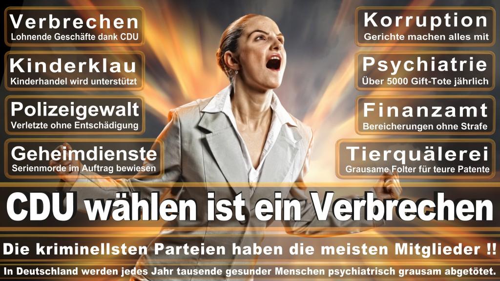 Bundestagswahl-2017 CDU (177)